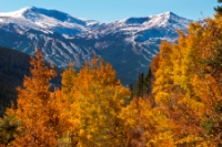 Fall leaves with Breckenridge behind